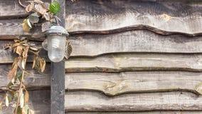 Lámpara vieja del vintage en la cerca de madera fotos de archivo libres de regalías