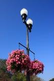 Lámpara y flor de calle Imagen de archivo libre de regalías