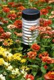 Lámpara y flores imagen de archivo
