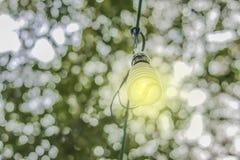 Lámparas ahorros de energía con el bokeh blanco del fondo natural Imágenes de archivo libres de regalías