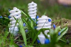 Lámparas ahorros de energía entre las flores de la primavera Imagenes de archivo