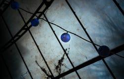 Lámparas asiáticas azules exóticas del estilo fotos de archivo libres de regalías