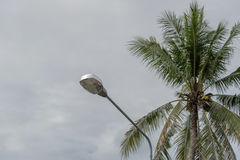 Lámparas de calle con un coco oscuro del fondo foto de archivo libre de regalías