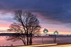 Lámparas de calle de los anillos de compromiso en la bahía inglesa Foto de archivo