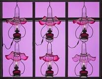 Lámparas rosadas Foto de archivo
