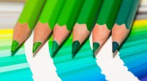 Lápices coloreados verdes y carta de color de todos los colores Imagen de archivo