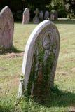 Lápida mortuaria cubierta en hiedra Imágenes de archivo libres de regalías
