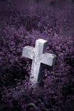 Lápida mortuaria en cementerio overgrown Imágenes de archivo libres de regalías