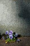 Lápida mortuaria vacía foto de archivo libre de regalías