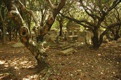 Lápida mortuaria vieja foto de archivo