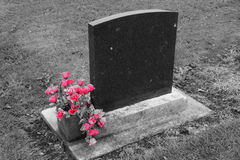 Lápida mortuoria en blanco con las flores 2 del rosa Fotos de archivo