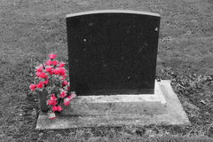 Lápida mortuoria en blanco con las flores rosadas Imagen de archivo