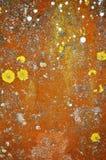 Lápida mortuoria vieja colorida en primer Imagen de archivo libre de regalías