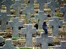 Lápidas mortuarias Imagen de archivo libre de regalías
