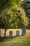 Lápidas mortuarias no marcadas en un cementerio soleado Foto de archivo libre de regalías