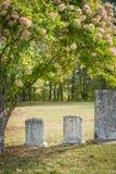 Lápidas mortuarias no marcadas en un cementerio soleado Fotos de archivo libres de regalías