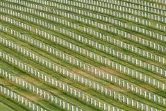 Lápidas mortuorias Imágenes de archivo libres de regalías