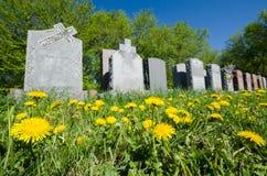 Lápidas mortuorias alineadas en un cementerio Foto de archivo
