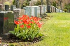 Lápidas mortuorias en un cementerio Foto de archivo libre de regalías