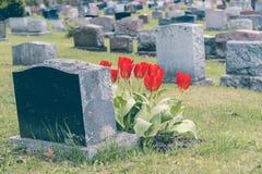 Lápidas mortuorias en un cementerio Imagenes de archivo