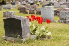 Lápidas mortuorias en un cementerio Fotografía de archivo