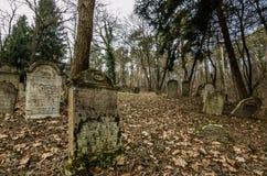lápides em um cemitério da floresta Imagem de Stock Royalty Free