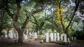 Lápides em um cemitério velho Imagens de Stock Royalty Free