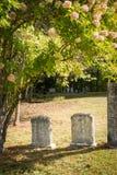 Lápides não marcado em um cemitério ensolarado imagens de stock