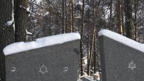 Lápides nevados com estrela de David em um cemitério ou em um cemitério judaico no inverno na floresta video estoque