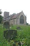 Lápides no cemitério coberto de vegetação Fotos de Stock Royalty Free