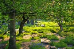 Lápides no cemitério de Prestwich, Reino Unido fotos de stock royalty free