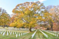 Lápides no cemitério nacional de Arlington - Washington DC Fotos de Stock Royalty Free