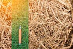 Lápis afiado no fundo verde da textura da grama seca do grassand jpg imagem de stock royalty free