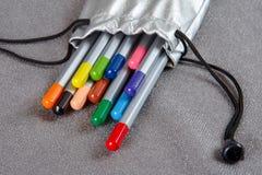 Lápis coloridos em um caso de prata Imagens de Stock