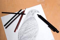 Lápis da embreagem com o falcão do desenho da grafite Fotos de Stock