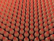 Lápis vermelhos ilustração stock