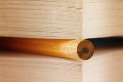 Lápiz en un libro Fotografía de archivo libre de regalías