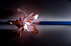 Lápiz-flor Imagenes de archivo