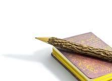 Lápiz y libro. Fotos de archivo libres de regalías