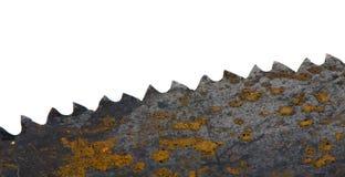 Lâmina de serra oxidada da mão no branco Imagem de Stock Royalty Free