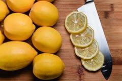 Lâmina do limão Fotos de Stock