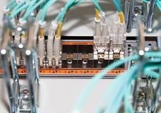 Lâmina do servidor da TI com conexão de fibra ótica Fotografia de Stock Royalty Free