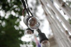 Lâmpada Foto de Stock