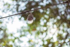 A lâmpada com fundo da natureza Fotografia de Stock Royalty Free