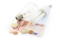 Lâmpada da economia de energia Fotografia de Stock