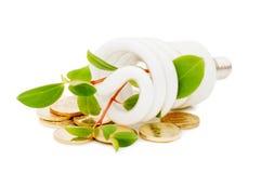 Lâmpada da economia de energia com seedling verde Fotos de Stock Royalty Free