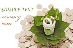 Lâmpada da economia de energia com verde e moedas Imagem de Stock