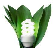 Lâmpada da fluorescência Fotografia de Stock Royalty Free