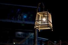 Lâmpada da gaiola de pássaro Imagens de Stock Royalty Free