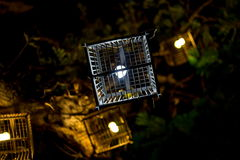 Lâmpada da gaiola de pássaro Fotos de Stock Royalty Free